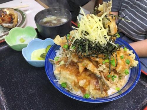 iwashi don