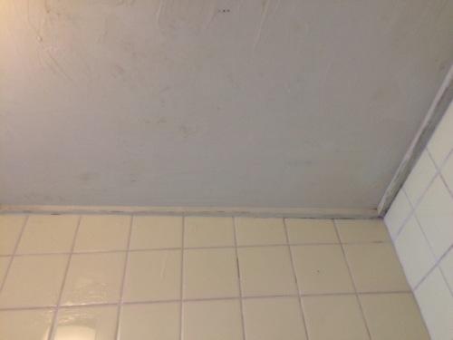 カビ取り剤でカビ取りした後、綺麗になったお風呂の天井