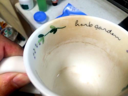 茶渋で汚れた珈琲カップ