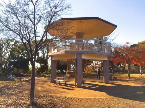 ペンギンに会える動物園、そして桜の花見の無料スポット!川崎市・夢見ヶ崎動物公園は意外に凄かった