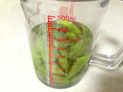 冷凍の枝豆をカップのお湯でチンしたら美味しかった