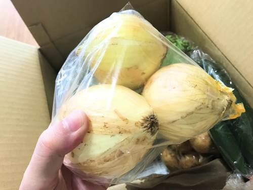 長崎県松浦市のふるさと納税『旬のお野菜+産みたて濃厚玉子』タマネギ