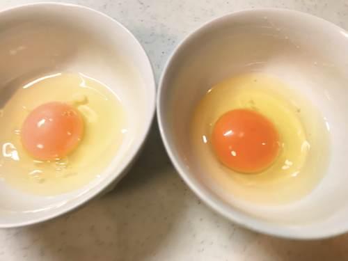 長崎県松浦市のふるさと納税『旬のお野菜+産みたて濃厚玉子』の玉子とスーパーの玉子を比べてみたら色が濃かった