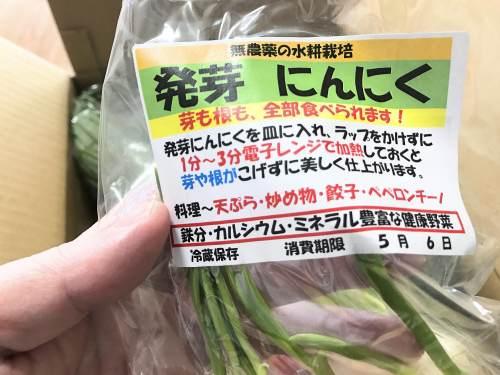 長崎県松浦市のふるさと納税『旬のお野菜+産みたて濃厚玉子』発芽にんにく