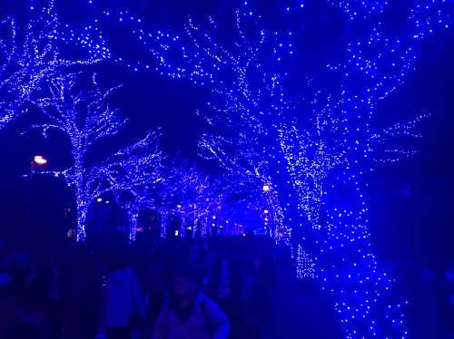 NHKホール前で開催される青の洞窟イルミネーション