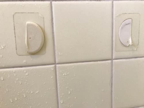 実際にお風呂場のタイルに貼られたシール
